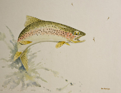 28  lEAPING  TROUT DSC00066 1