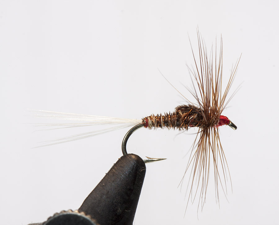 Frank Sawyer Red Pheasant Tail Spinner dry fly