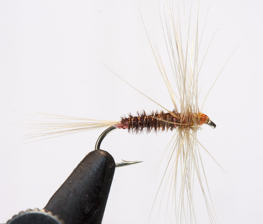 GEM SKues Pheasant Tail