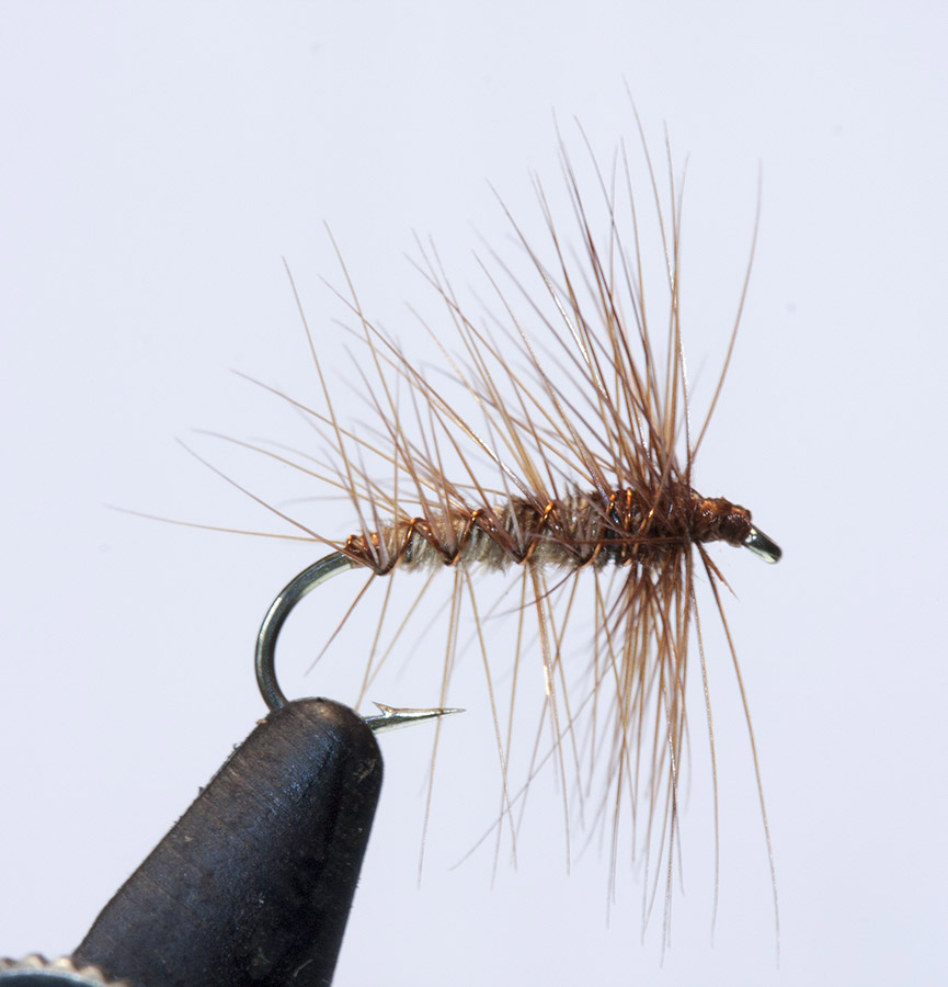 Sedge pattern Oliver Kite 8464