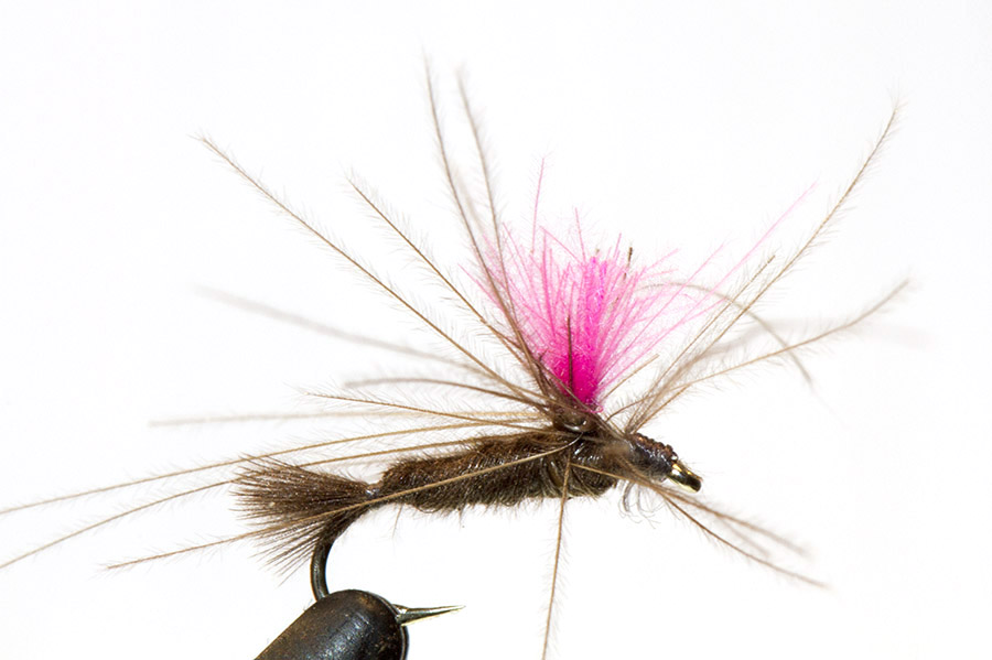 3 Black Beauty and 3 Miracle Midge Grey Nymph Fly w//clear bead size 24  6 qty.