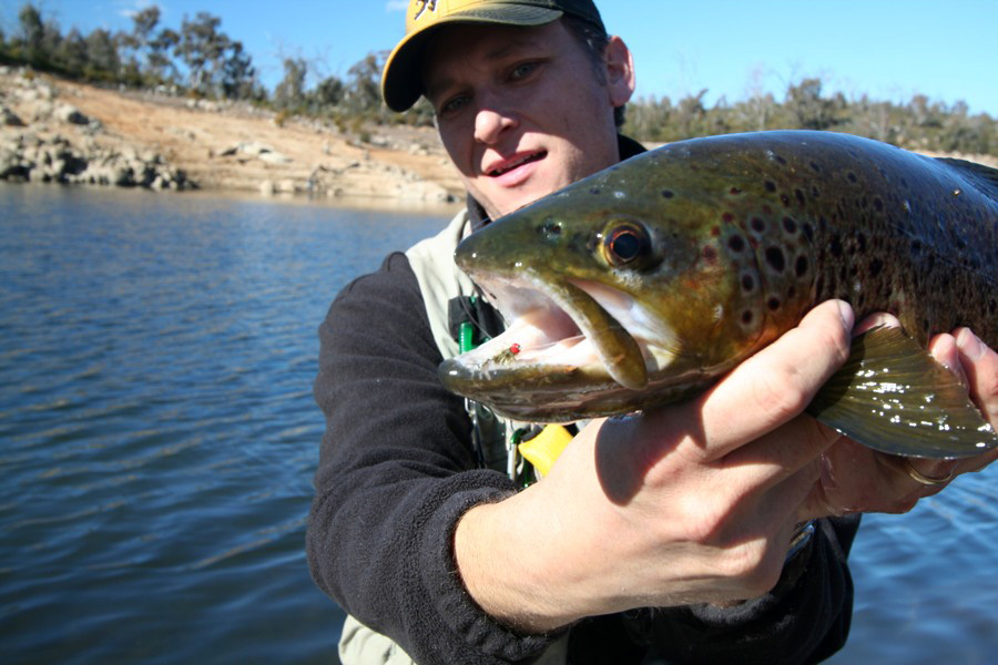 Danny Spelic with a nice brown trout from Jindabyne