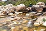 Fly stream tapestries - Rocks, roots, lichen and waterfalls