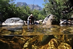 Underwater fly fishing photography (32)