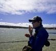 Sand shark photo essay