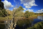 Sterkspruit River Themed Gallery