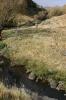 Bradgate Stream Vrederus 1 (2)