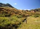 Willow stream, Balloch (7)