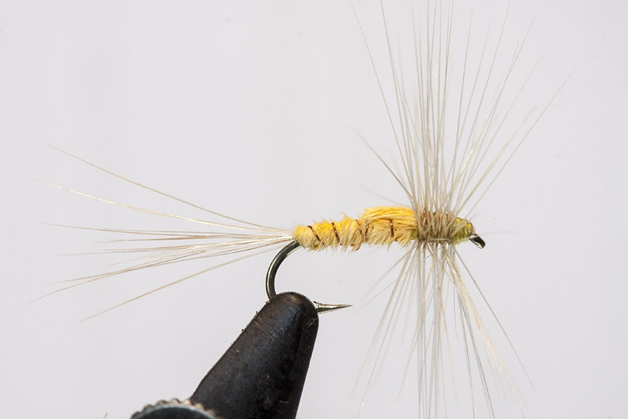 THE DRY FLIES OF OLIVER KITE