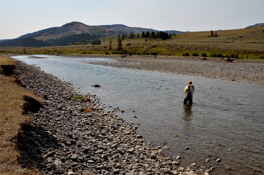 3. Lamar River landscape