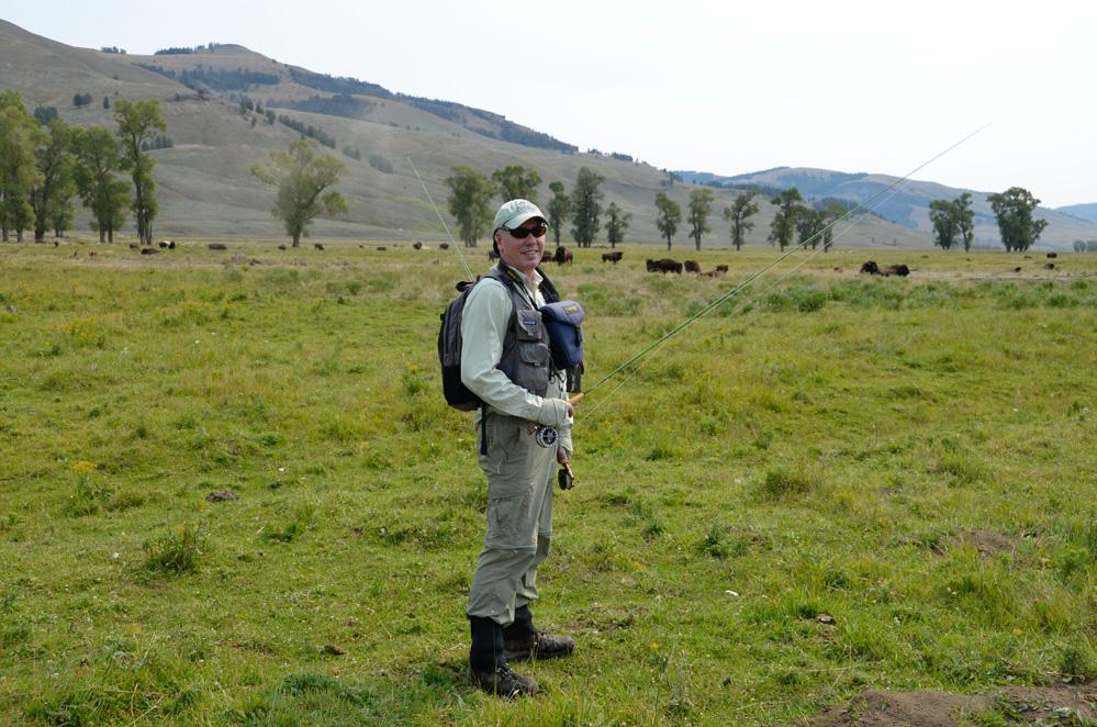 5. Strolling among buffalo