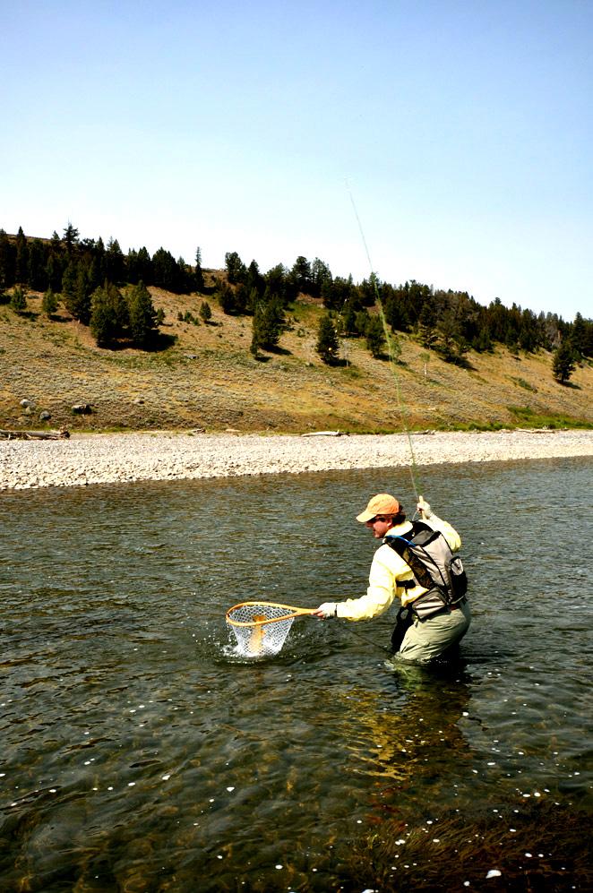 6. Lamar River. Rowan landing a cutthroat