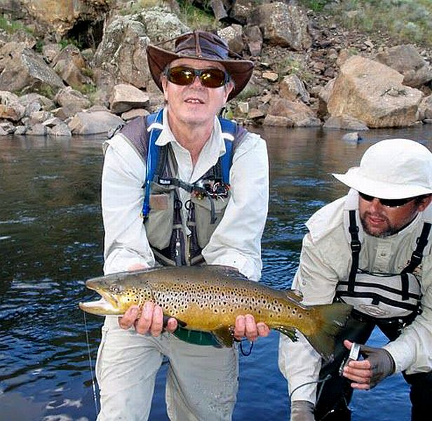 Brown_trout_Lesotho_5