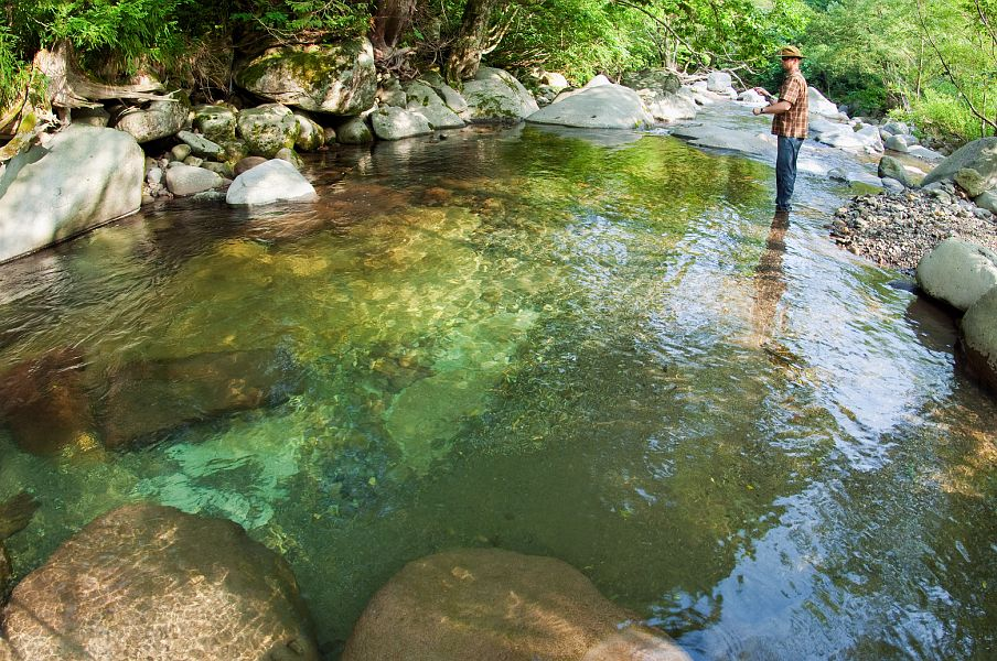 how to catch trout in a stream