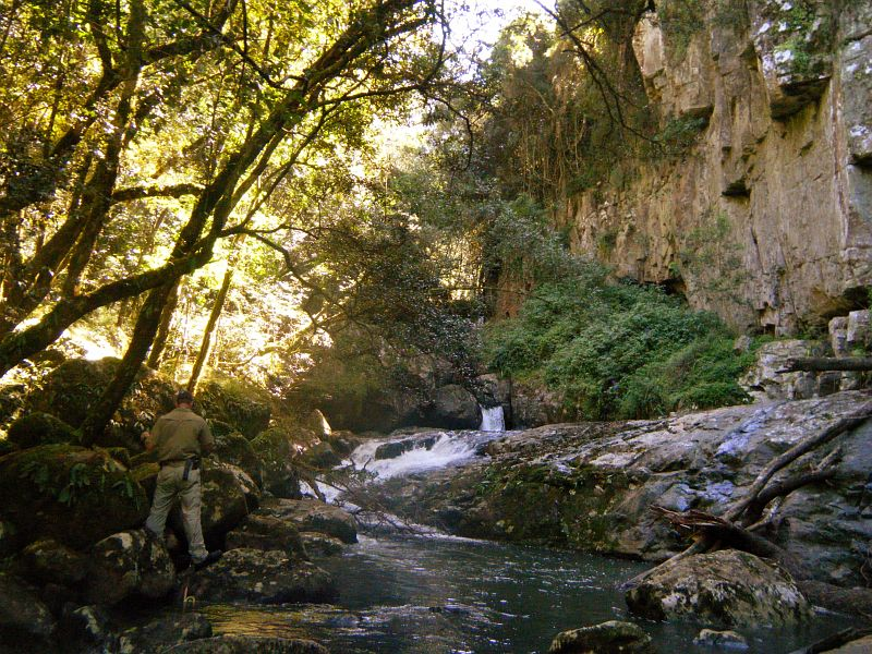 The_Wolf_River_Eastern_Cape1_4